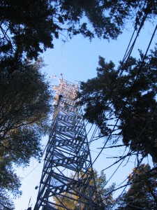 forest research tower