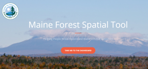 Screenshot of Maine Forest Spatial Tool website