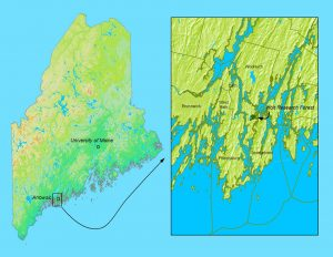 Map of Maine with closeup of the Holt Research Forest area.