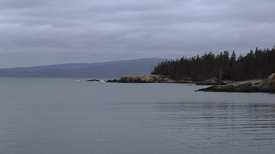 Photo of Schoodic Peninsula, Maine.
