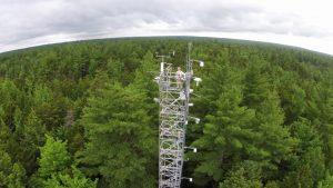 Photo of research scientist atop the monitoring tower in Howland Research Forest.
