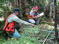 Photo of researchers in Penobscot Experimental Forest