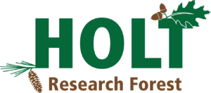 Press release about the Holt Forest strategic plan release