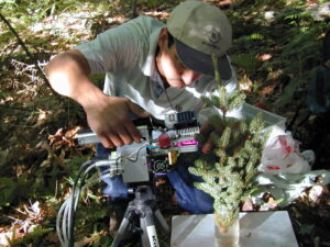 Photo of researcher using analyzer to measure photosynthesis