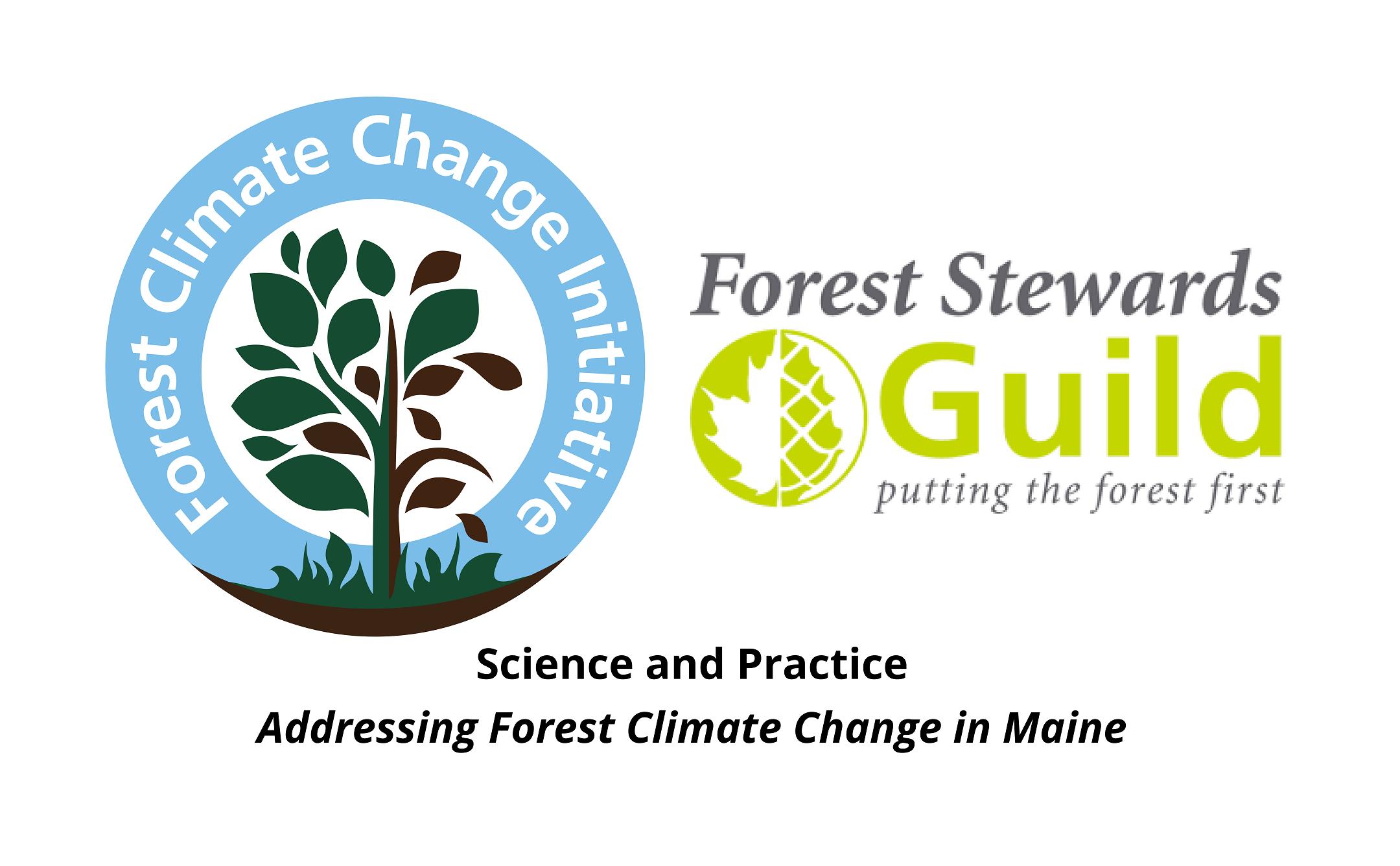 Logo for FCCI and FSG webinar series