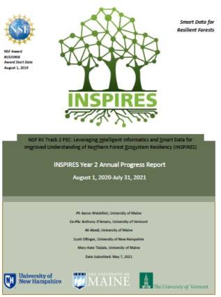 pic of INSPIRES year 2 progress report cover